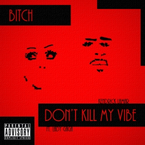 Song: Bitch Don't Kill My Vibe